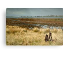 Beacon Point, view to Queenscliff Metal Print