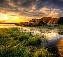 Tall Grass Sunset by Bob Larson
