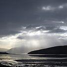 Dingle Bay by Paul Finnegan