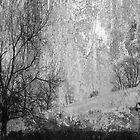 Winter Trilogy - B&W by -Whisper-