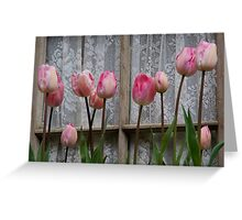 Spring Tulips and Lace Greeting Card