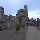 Blackrock Castle by EMESS