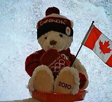 Lil' Canucky Bear! by Carol Clifford