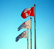 The Flags - Whistler, BC by Tejana Howes