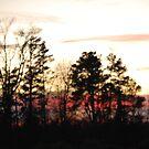 Sunset 7 by PhyllisAnne Pesce