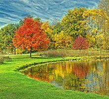 Fall At The Pond by Michael Schaefer