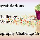 Challenge Winner Banner by Jodi Turner