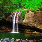 Pure Nature - Buderim Falls by Adam Gormley