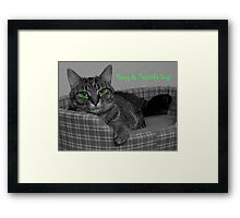 Happy St. Patrick's Day From Gracie Framed Print