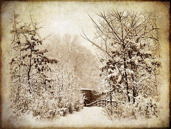 Winter's Path by Jessica Jenney