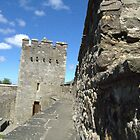 Stone Wall - Cahir Castle by EMESS
