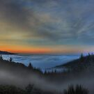 Above the Fog by Randall Scholten