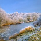 Heavy Frost by Eddie Howland