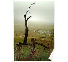 Macendon Ranges,A Damp Foggy Morning Poster
