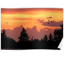 Sunset Wallpaper Poster