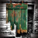 The Old Barn Door by GGleason