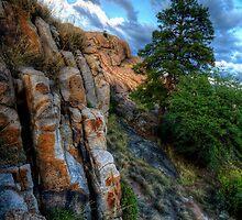 Ridgeline View by Bob Larson