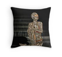 RBv2 Roberta Shine Throw Pillow