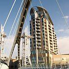 Lowry Bridge one by Brian Stark