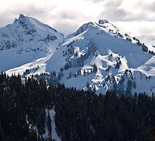 The Tatoosh Mountain Range by Barb White