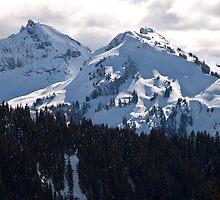 The Tatoosh Mountain Range by Barb White