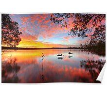 Lake Doonella - Noosa Heads Poster