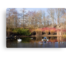 A Winter's Pond Canvas Print