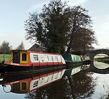The Monmouthshire & Brecon Canal by Steve  Liptrot
