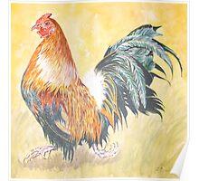 Cockerel Poster