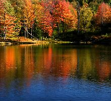 Autumn reflections by snehit