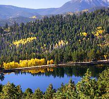 Scenic landscape in Colorado by snehit