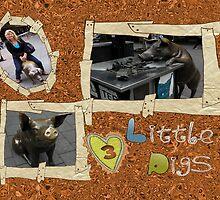 3 Little Piggy's by judygal