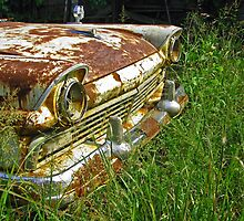 Rusty Ranchero by Richard Lawry