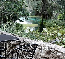 Table at Rainbow Springs State Park by AuntDot