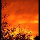 The sky's on fire! by amylw1