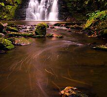 Serene Falls  by Rameez Khawaja