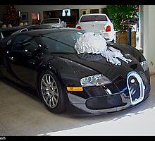 Bugatti Veyron Special Edition by Naik Michel