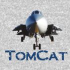F14 Tomcat T - No background by djphoto