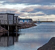 Petty Harbour Blue by Brian Carey