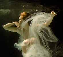 Submerged Series, Looking Back by Patricia Ridenour