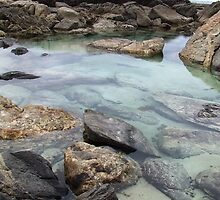 Starfish pool - west coast, Eyre Peninsula by kalsang1