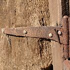 Well used hinges by Laura Mitchell