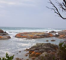 Bay of Fires before the storm by Charlie Busuttil