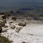 Gulf of Mexico Shoreline by tapiona