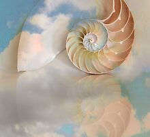 Nautilus shell in the clouds by bettywiley