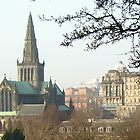 101 - GLASGOW CATHEDRAL SEEN FROM NECROPOLIS - 02 (D.E. 2009) by BLYTHPHOTO