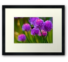Bee & Chive Framed Print