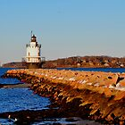 Spring Point Light by David McCrillis