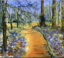 Bluebell Wood by FrancesArt