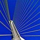 Flintshire Bridge by Lydia Griffiths